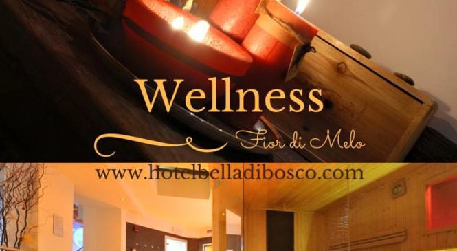 Relax Wellness in Val di Sole.. 458 euro!