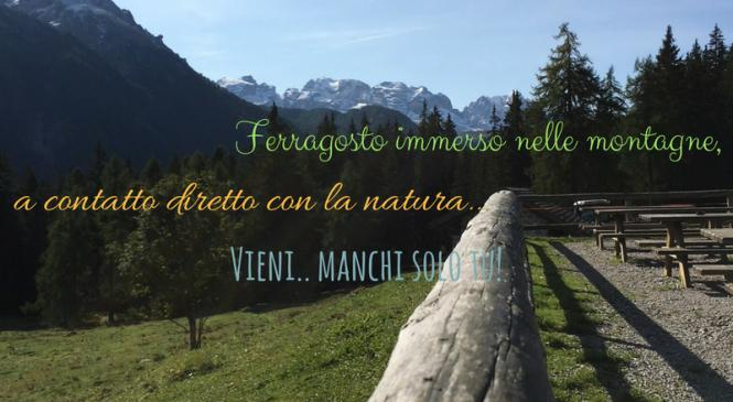 August in Val di Sole - 7 nights at 1060 euros per room.